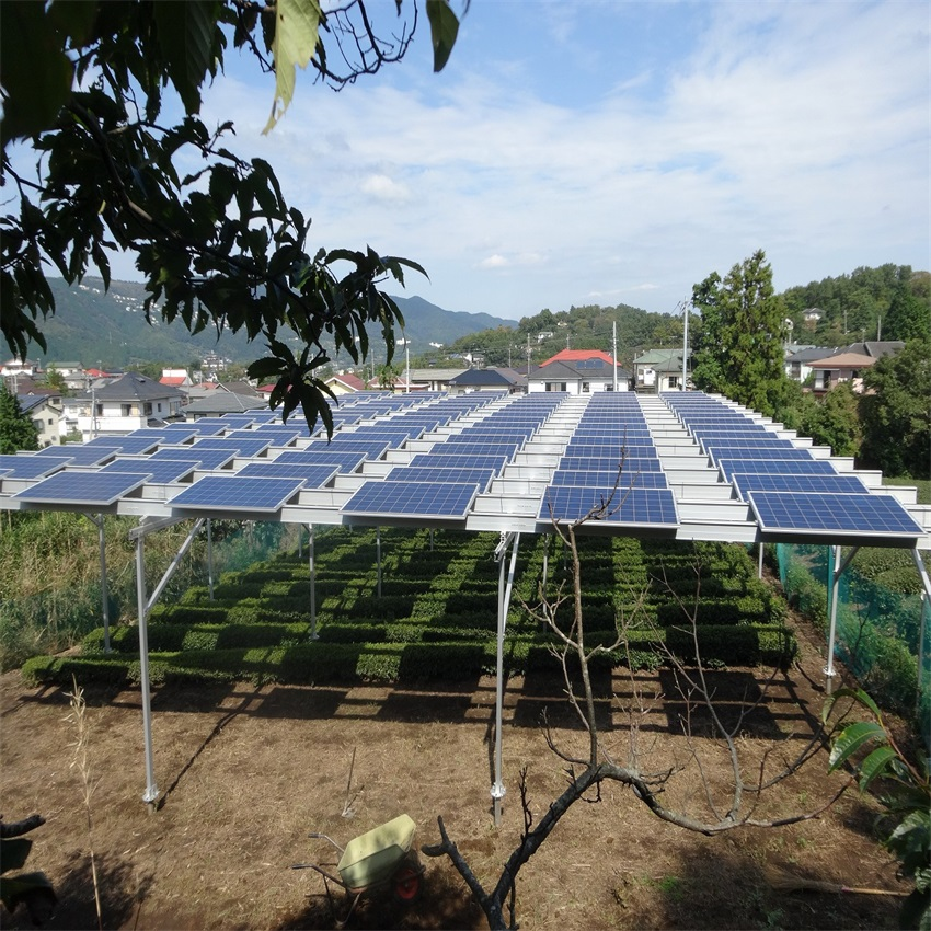 RN-AS Agricultural Greenhouse-Xiamen RiNeng Solar Energy Technology Co.LTD